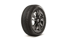 "Complete winter 17"" alloy wheel TRITON KAROQ"
